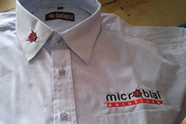Wovenshirt embroidery